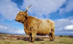 0903 Simon Ellery Sky over Exmoor