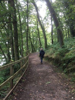 0907 Andrea Corrie the beautiful woodland near the dam at Wimbleball Lake ...
