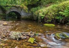 0911 Dave Rowlatt A little bit of Exmoor