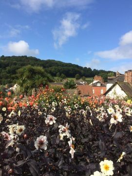 0912 Andrea Corrie The dream garden at Dunster today