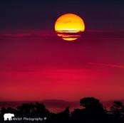 0925 Bear Welsh sunrise taken from Bratton Straight.