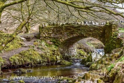 2309 Sue Bird Robber's Bridge covered in moss.
