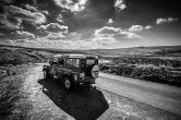 On Safari B&W