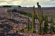 109 Peter Mather 01