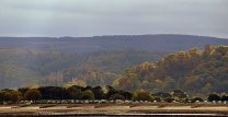 109 Peter Mather 02