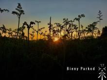 Binny Parker 03