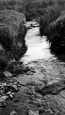 Gail Ridd Jones 01