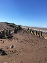 Janet Daley 03