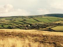 Julie Beard 01