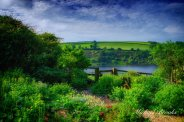 Michael Brooks 01
