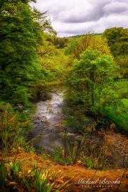 Michael Brooks 02