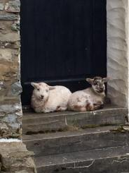 Paul Blackford 01