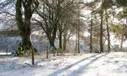 Richard Clements 02