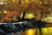 Robert Hatton 01