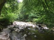 Wendy Gammon 01