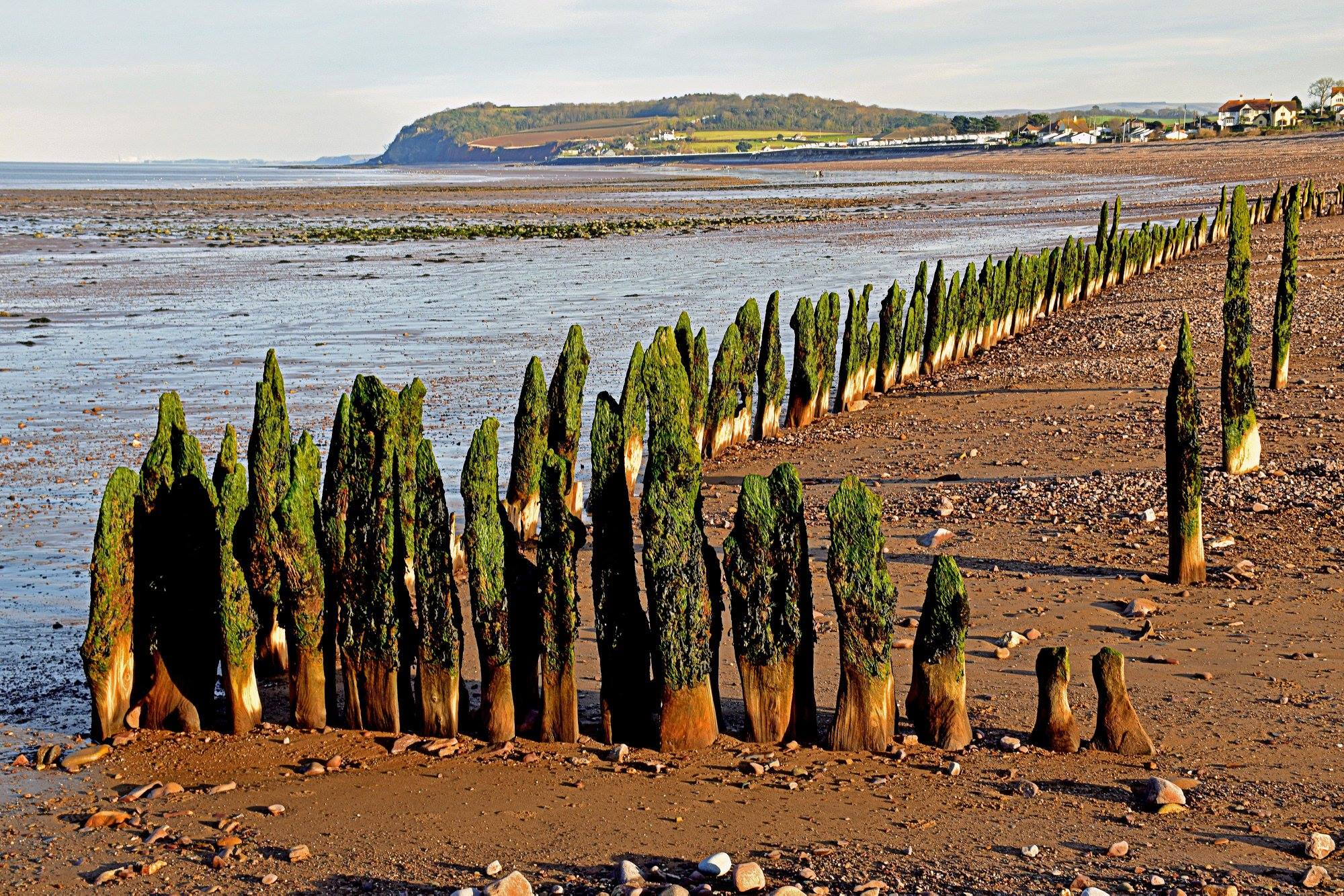 The Stakes at Blue Anchor Beach